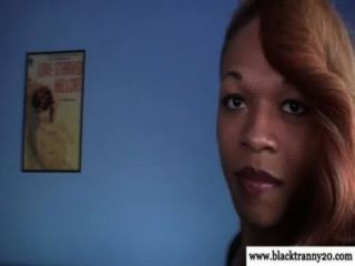 Ebony Tranny Shemale In Solo