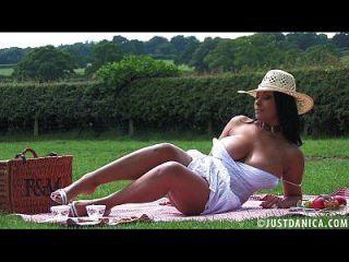 Donna Ambrose Picnic And A Wank