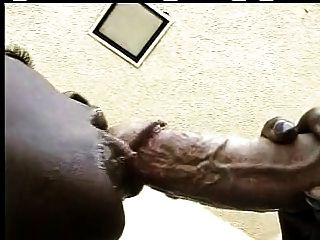 Amazing African Blowjob