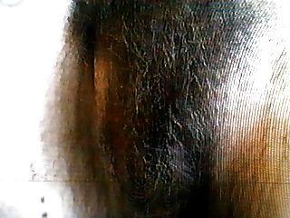 Hairy Hippy 5