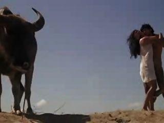 Filipino Wild Uncensored Sex From The Explicit Film Silip