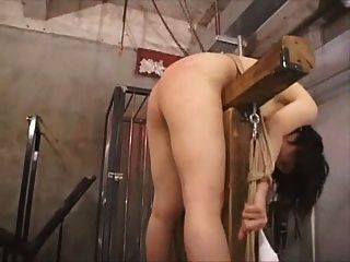 Asian whipping tube