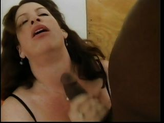 Bbw Loves Bbc