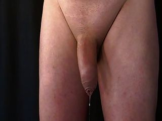Prostate And Balls Massage. Pre-cum And Hands Free Cum-shot