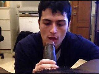 White Mexican Young Boy Sucking Black Cock Eating Cums