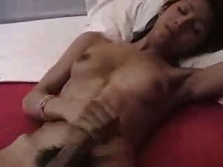 Paja De Travesti