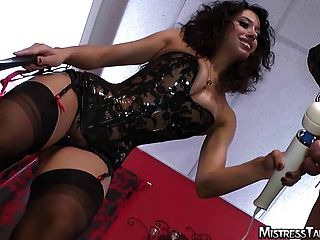Mistresses In Femdom Action