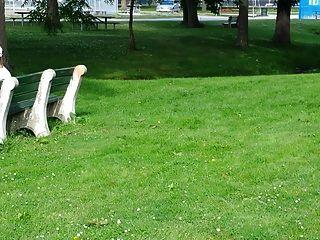 Stroking In Park