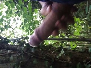 Uk Big Cock Cum In The Woods