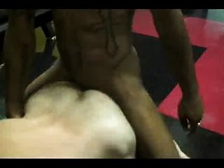 Pigs Bareback In The Gym