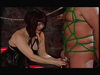 Femdom Cock And Ball Punishers