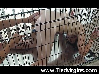Caged Slut Dildo Fucked!