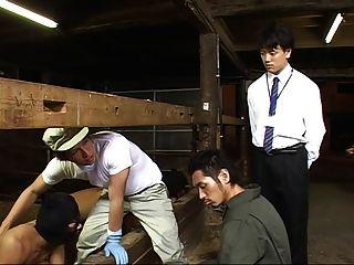 (new Sexual) Gay Milk Farm-02