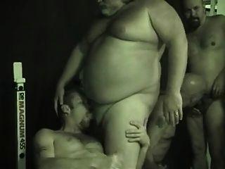 Orgia De Osos Y Gorditos - Bears And Chubby Orgy