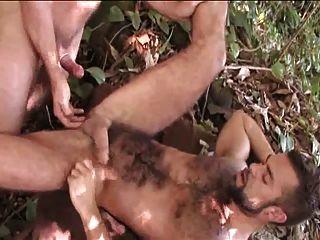 Dos Peludos Follando En La Selva