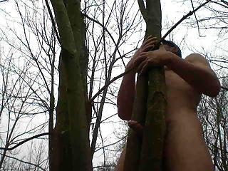 Petit Plaisir Dans Les Bois
