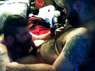 Two Bears With Beard Having Fun
