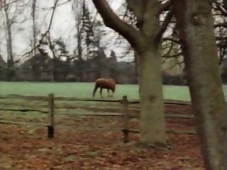 The Horny Farm