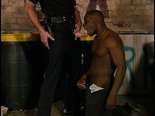 Alleycat Cop