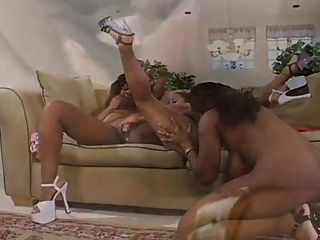 Ebony Mussdivers