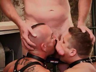 Joey And Brad Bareback Pigs