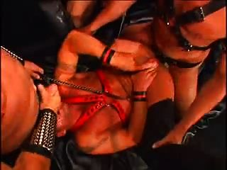 Leather Bears 3