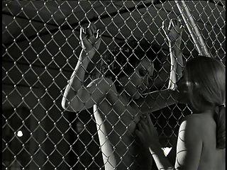 Angelina Jolie..   Nude