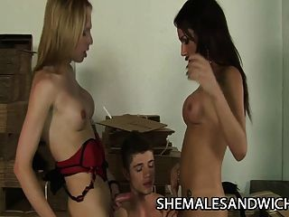 Alessandra Leite & Carol Vendraminy: Hot Shemale Domination