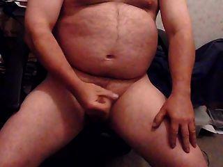 Web Cam Bear -1