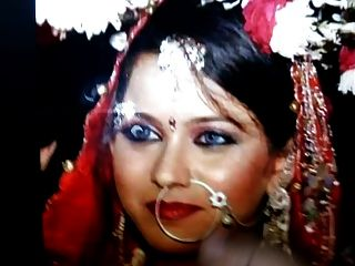 Desi Bride Tribute