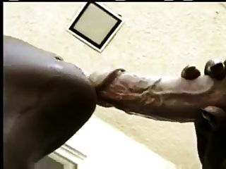 Black Woman Suck Bwc For Cum