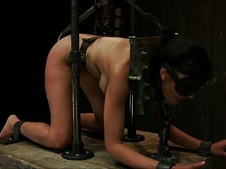 Beautiful Brunette Tortured 3