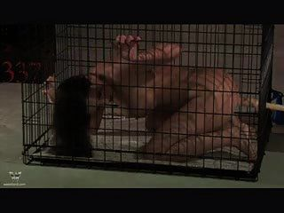 Caged Blowjob