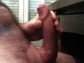 Uncut French Daddy Bear