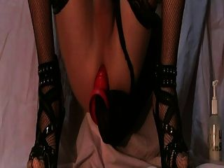 Cd Stockings High Heels Anal Butt Plug Cum