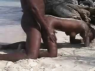 Amature Ebony Beach Fuck
