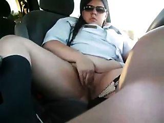 Bird In The Car