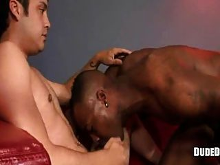 Black Gay Fucks A White Boy