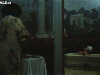 image Laura levi ajita wilson nadine roussial guia lauri filzi