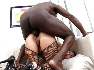 Hottie Butt-banged By A Black Cock