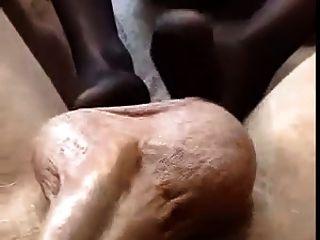 Kurumipantyhose - Black Pantyhose