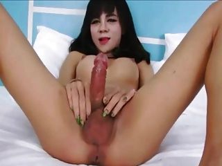 My Passion For Hairy Ladyboys Vr88