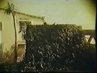 Reformatorio Das Depravadas-1