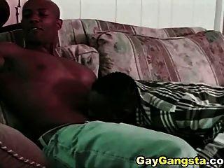 Cock Sucking And Hardcore Fucking