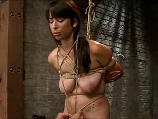 Brunette Tied Teased And Vibed 2 Of 2