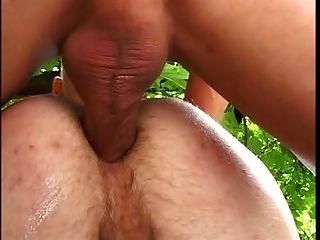 Sex Im Gruenen