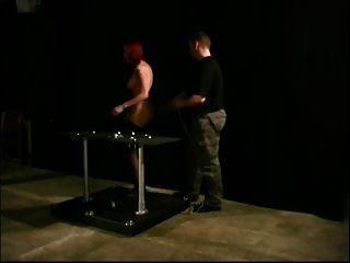 Tits Tortured 13