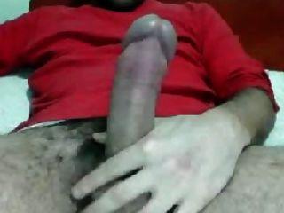 Huge Headed Cock