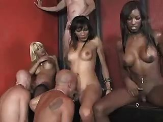 Three Horny Shemales Fuck Four Guys