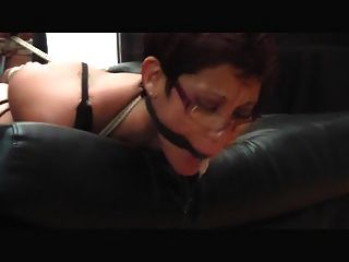 Hogtied And Drooling